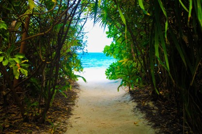 Island Villas open to the Beach Side