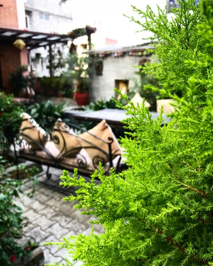 Gorgeous Courtyard Views at Hotel Middlepath
