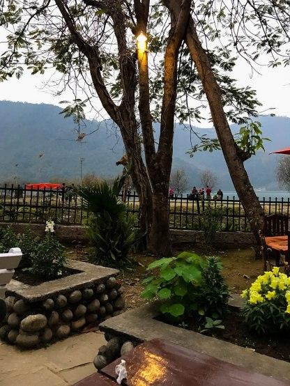 Views at the Boomerang Cafe