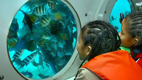 submarine tour bali